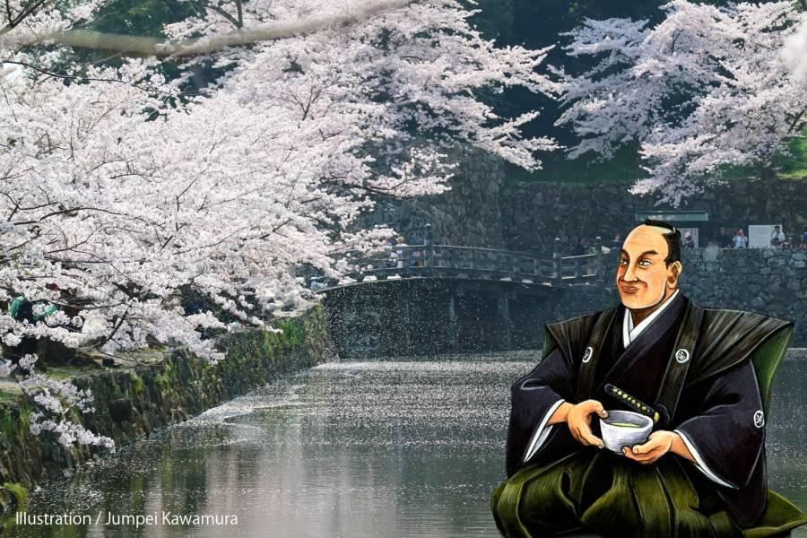 |彦根お天気ブログ| 彦根城の桜が待ち遠しい・・・桜の開花予想とお花見プラン