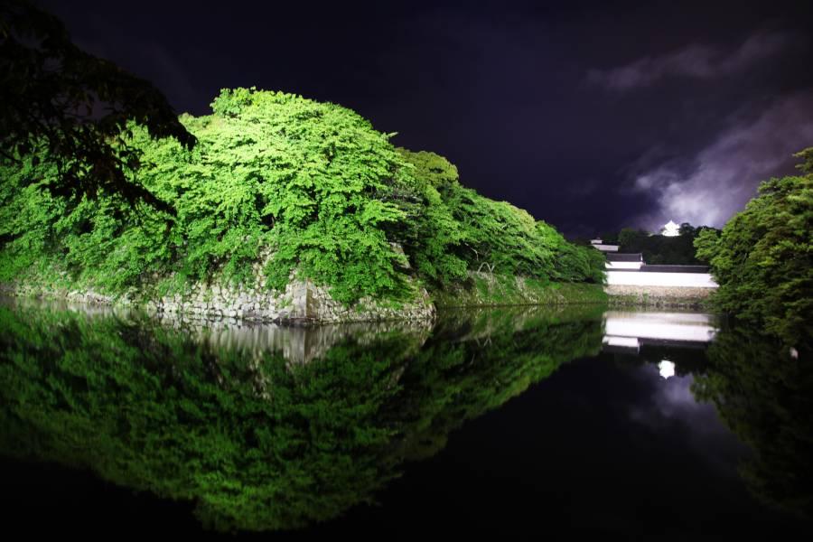 |彦根お天気ブログ| 新緑の彦根城