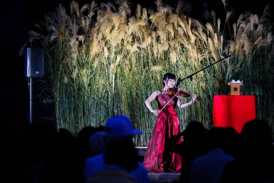バイオリン演奏者:松本 菜々香 様