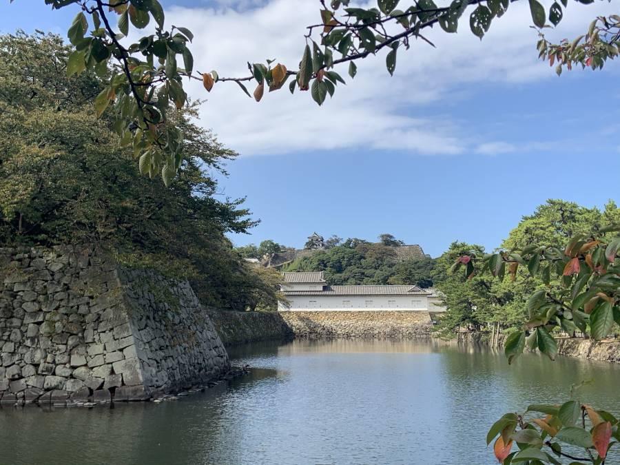 台風19号に警戒(+_+)