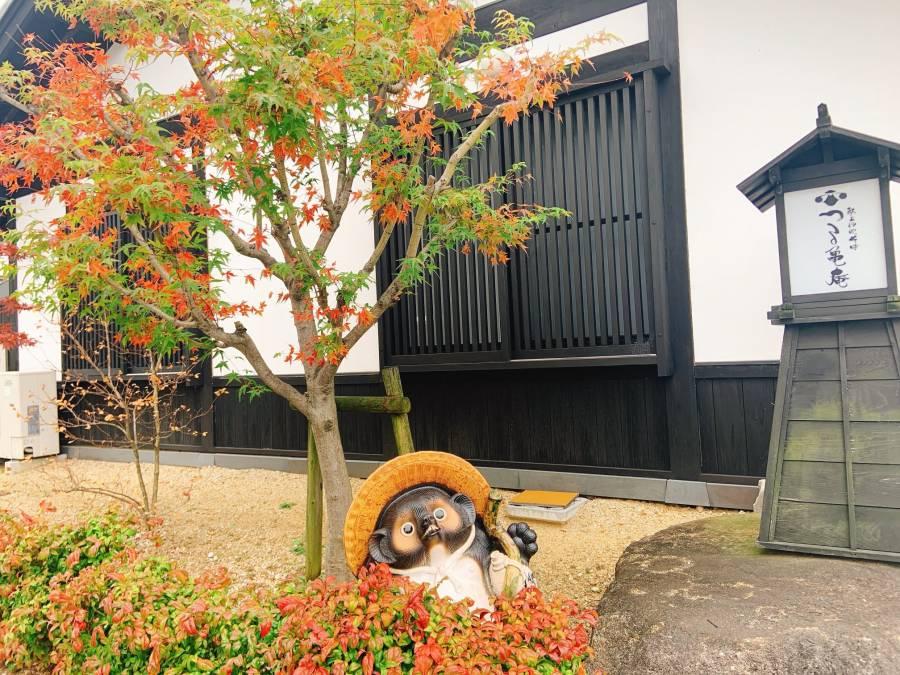 |彦根お天気ブログ|珍しいモミジ(^^)/