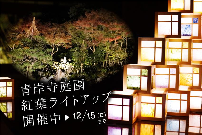 青岸寺庭園 紅葉ライトアップ 初開催中!送迎付き「宿泊プラン」もあります!