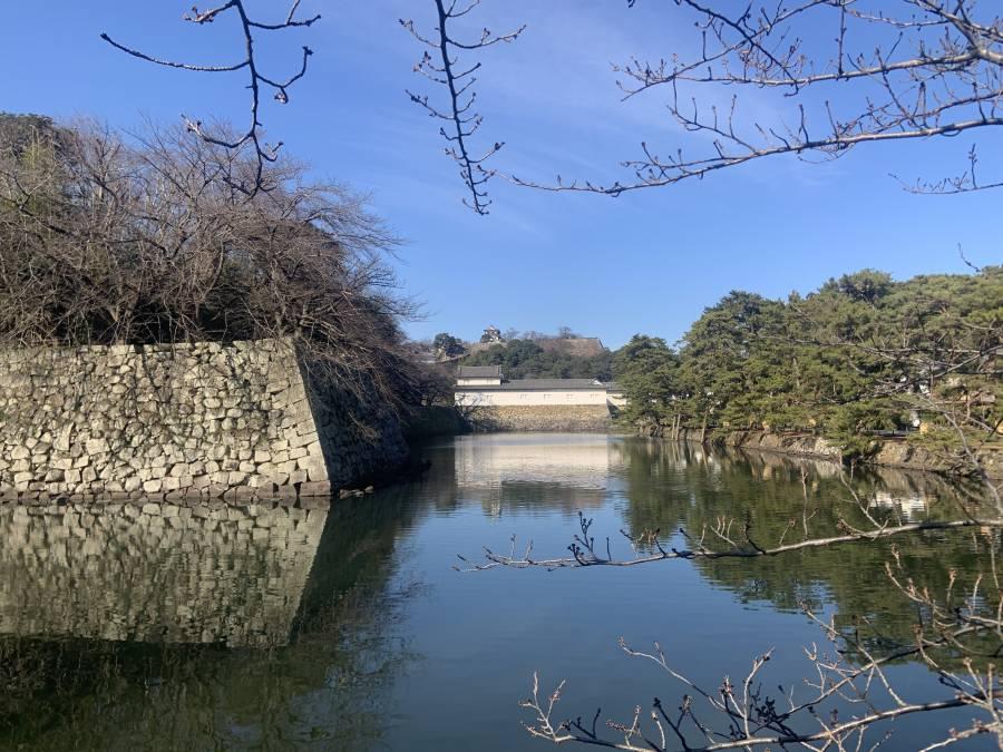 |彦根お天気ブログ|広く晴れています(^^♪明日は新成人の集い!