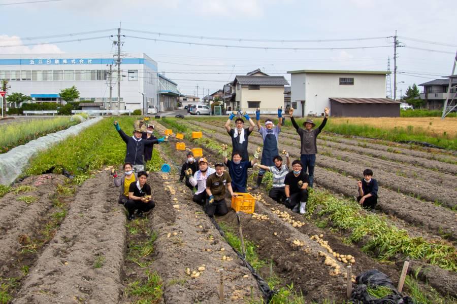 地元野菜を考える会・じゃがいも掘り体験へ