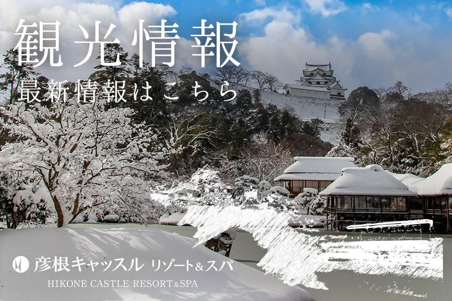 【2019年1月10日〜3月10日】第68回 長浜盆梅展