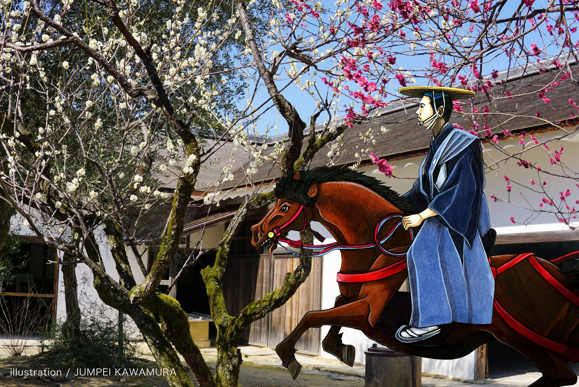 |彦根お天気ブログ|  彦根城の梅は咲いたか、桜はまだかいな〜